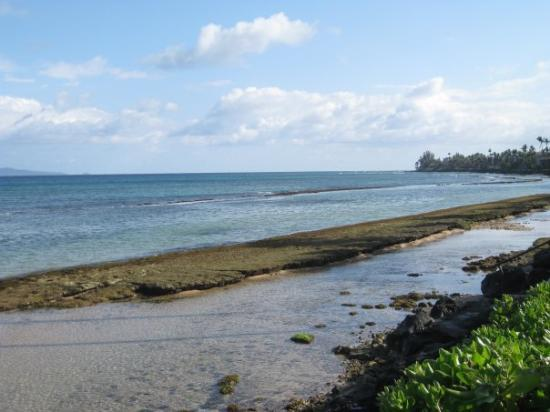 Lahaina, HI: In da mornin da tide is low...