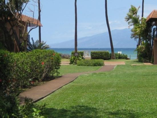 Lahaina, HI: Looking west to Molokai from the gardens of Maui Sands