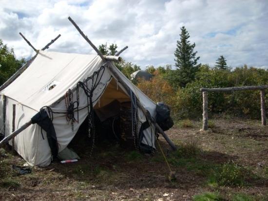 Healy, AK: tack tent in alaska