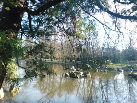 Japanese Garden - Szczytnicki Park: Japonská Zahrada (Japanase Gardens) - 8