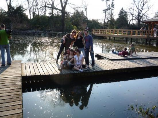 Japanese Garden - Szczytnicki Park: Japonská Zahrada (Japanase Gardens) - 3