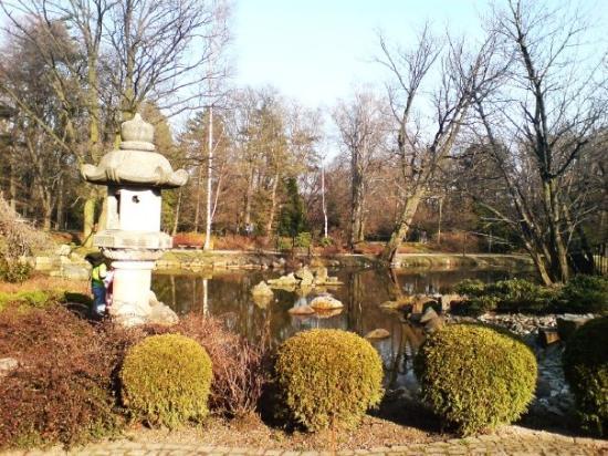 Japanese Garden - Szczytnicki Park: Japonská Zahrada (Japanase Gardens) - 6