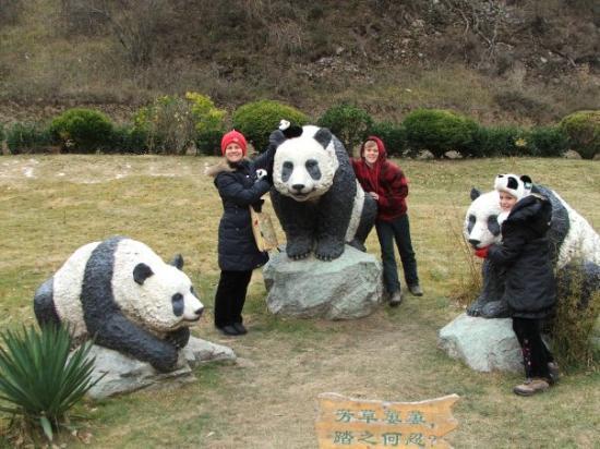 Jiuzhaigou County, Kina: Pick the real Panda.