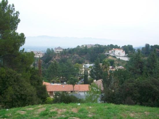 Zdjęcie Beverly Hills
