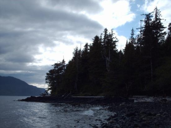 Craig, AK: Another Graveyard Island Pic