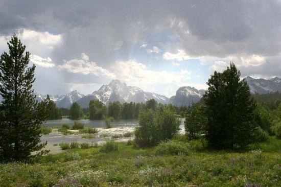 This is my favorite landscape picture from this trip.  This is in The Grand Teton National Park