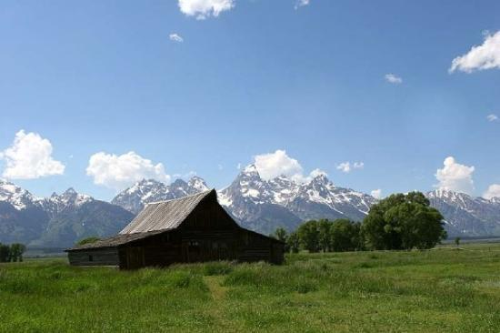 Old Barn on Mormon Row in Grand Teton National Park