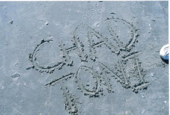 North Myrtle Beach, SC: He wrote our names in the sand...he is so ROMANTIC