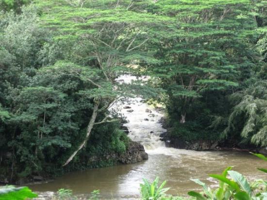 Bilde fra Lihue
