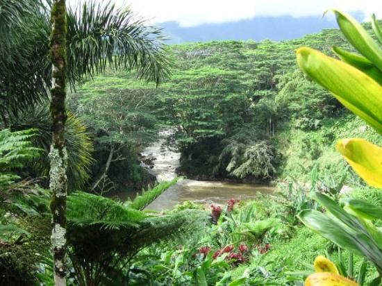 Lihue, HI: The Eden-like view from the Hindu Temple in Kaua'i.