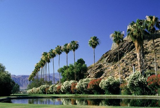 Palm Desert Photos Featured Images Of Palm Desert Greater Palm Springs Tripadvisor