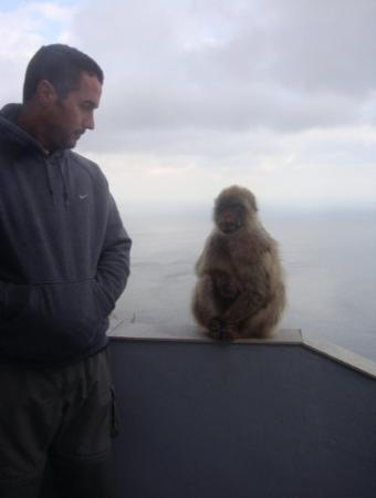 Gibraltar: Quick, you-me staring contest!