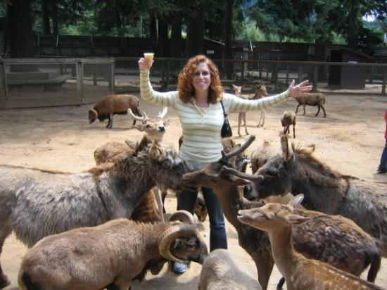 Bandon, OR: What can I say, the animals just flock to me!