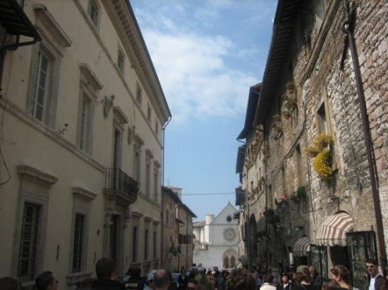 Assisi, Italia: ahh so pretty [dani this is the one i was talking about from tuscany]