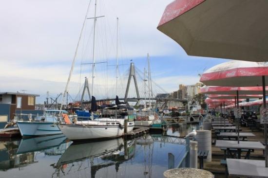 Sydney Fish Market: Anzac Bridge