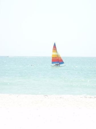 Punta Gorda, FL: Naples, FL, United States