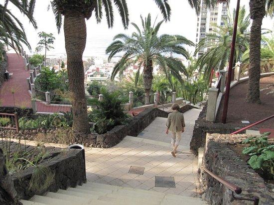 Hotel Tigaiga: Hinunter durch den Taoro Park ging es einfacher als wieder hinauf