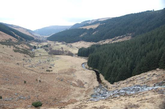 Day Tours Unplugged: Traveling from the Wicklows to Glendalough