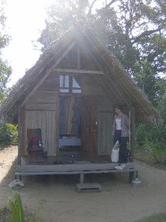 Tampolodge: our hut