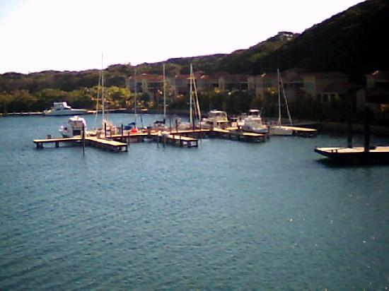 Parrot Tree Beach Resort: Yacht club