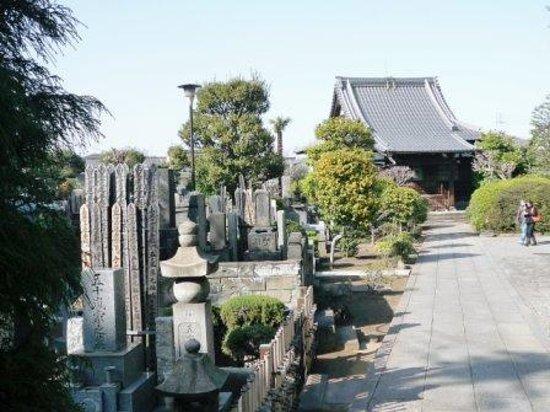 Yanaka : 霊園