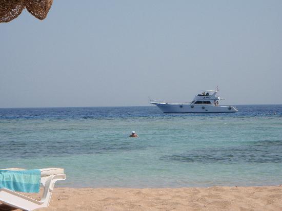 Baron Resort Sharm El Sheikh: Sunlounger view