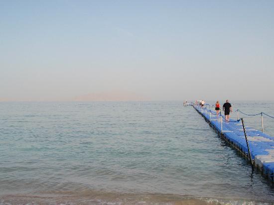 Baron Resort Sharm El Sheikh: Pontoon to reef edge