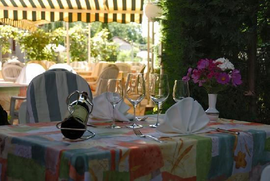 Hostellerie Bressane Cuisery: Table à la terrasse, à l'ombre du beau platane