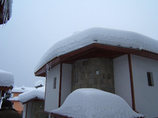 Forest Nook 1 & 2: snow on roof