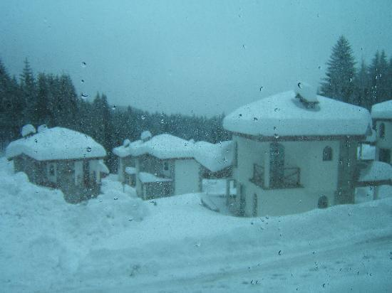 Forest Nook 1 & 2: view from chalet