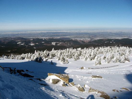 Kaufmannshof Ferienwohnungen: Amazing views from the top