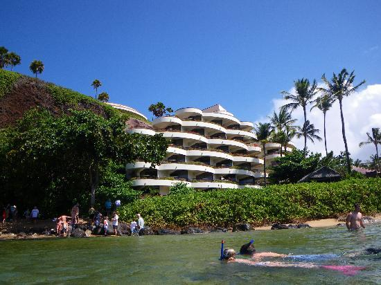 Sheraton Maui Resort & Spa: snorkelling by Black Rock