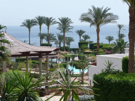 Renaissance Sharm El Sheikh Golden View Beach Resort: View of sea from the pool