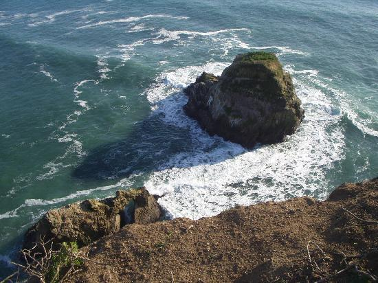 Olema, CA: Chimney Rock - Pt. Reyes