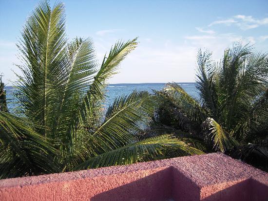 Sin Duda Villas: rooftop ocean view