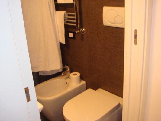 Pantheon Royal Suite: Room 308 Toilet!