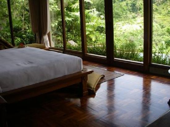 The Royal Pita Maha: 部屋からの眺め