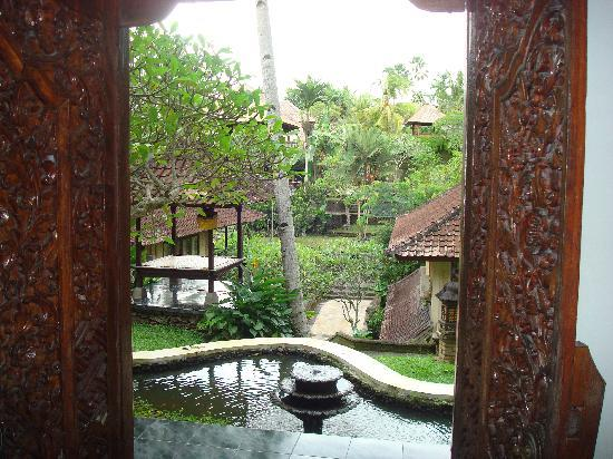 Pertiwi Resort & Spa: view from the room