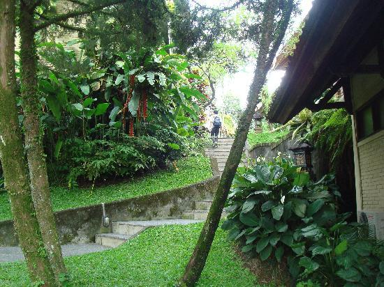 Pertiwi Resort & Spa: path through the complex