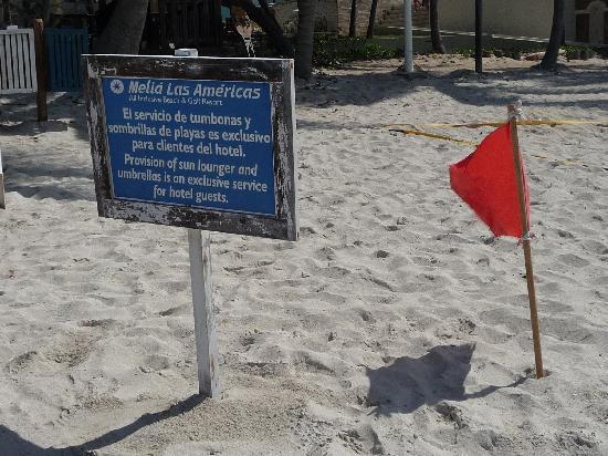 Melia Las Americas: Bandera roja durante toda la semana de mi estadia Que penita :(
