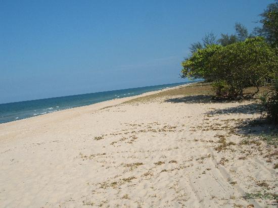 The Aryani Terengganu: The beach