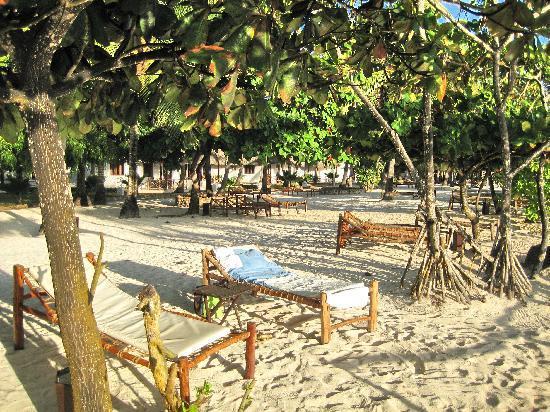 Diamonds Mapenzi Beach: weißer, durch Palmen sehr schattiger Garten mit weißem Sand und komfortablen Liegen