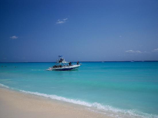 Hotel Riu Yucatan: Beach front