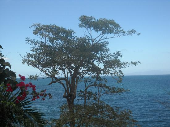 Casa Isabel: View from house