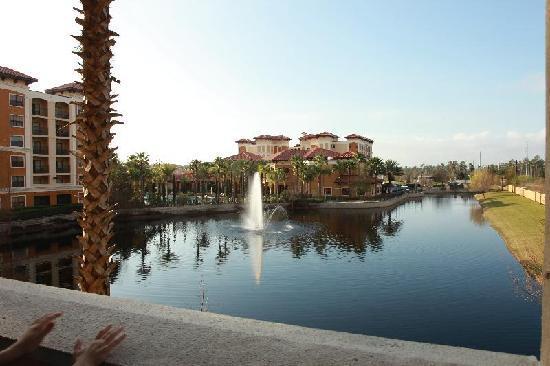 Floridays Resort: view from balcony of bldg c room 209