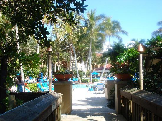 Napoli, FL: Ritz Carelton Pool