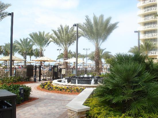 JW Marriott Marco Island: Pool at the Marriott