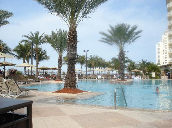 JW Marriott Marco Island: Another pool view