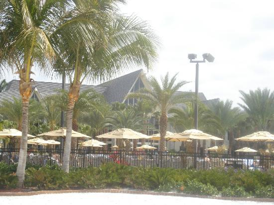 JW Marriott Marco Island: Another view from the beach
