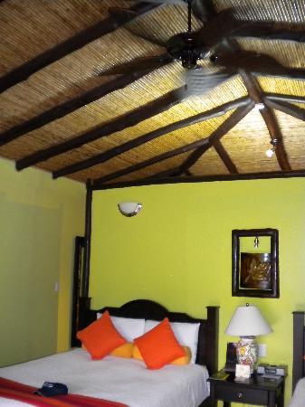 Nayara Resort Spa & Gardens: room interior